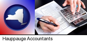 Hauppauge, New York - an accountant at work