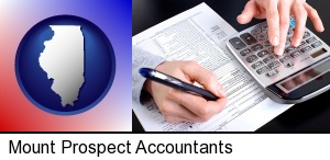 an accountant at work in Mount Prospect, IL